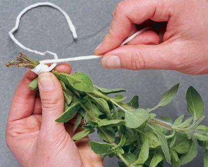 kg10-drying-herbs-03_lg