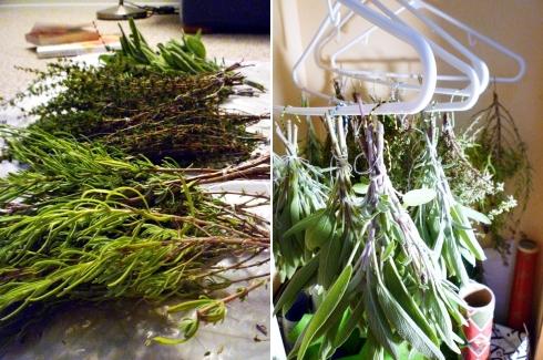 masoor-dahl-dried-herbs-086-horz